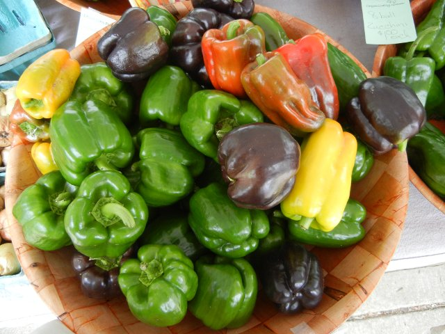 A basket of bell peppers, containing mostly green, but many dark purple and some yellow and red peppers