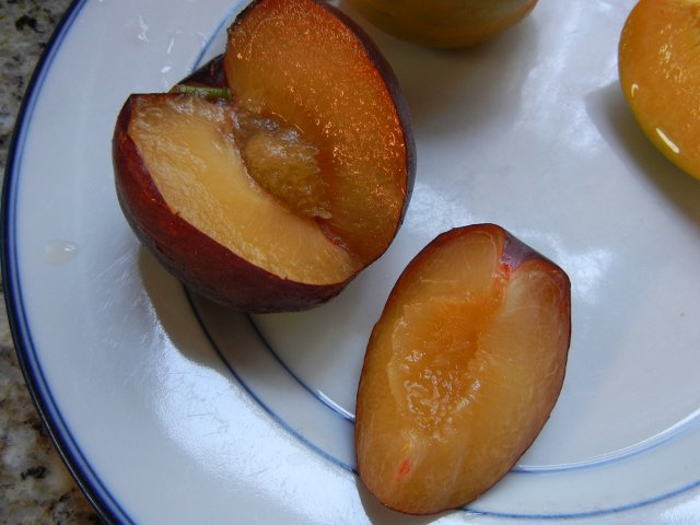 A black velvet apricot, sliced, on a blue plate, showing soft, juicy golden interior, and a small, apricot-like pit