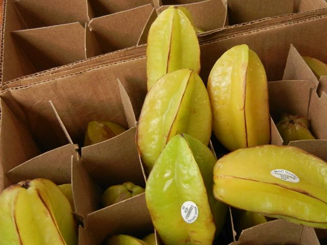 Carambolas, yellow and greenish, packed in a cardboard partition