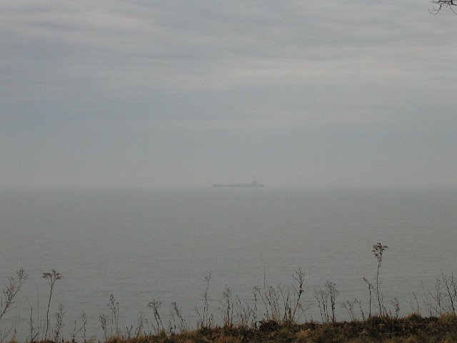A distant barge on lake erie, gray water, party cloudy sky, and dead, weedy plants in the foreground
