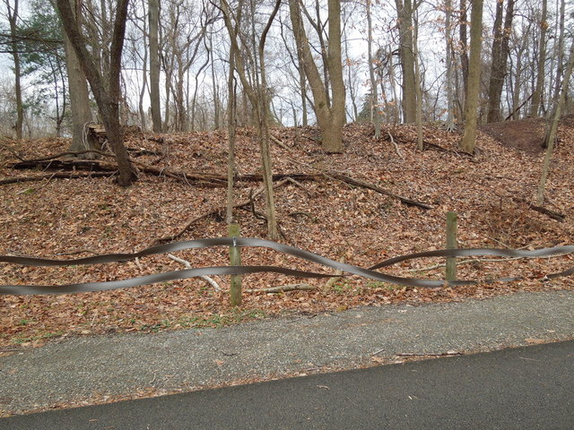 A fence that has bizarre twists and distorted patterns in it, against a winter scene of leaves in a forest