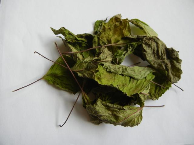 Large, flat, dried leaves, with a yellowish-green color and reddish stems