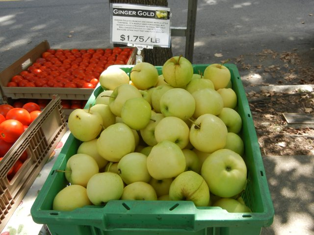 Ginger gold apples, large, light yellow-green, round apples