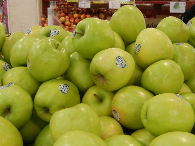 Many large, yellowish-green apples with a mostly round shape