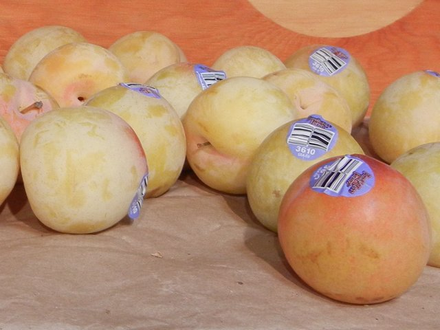 Golden tree pluots on a shelf, a peachy-yellow, plum-like fruit, with produce stickers showing PLU code 3610