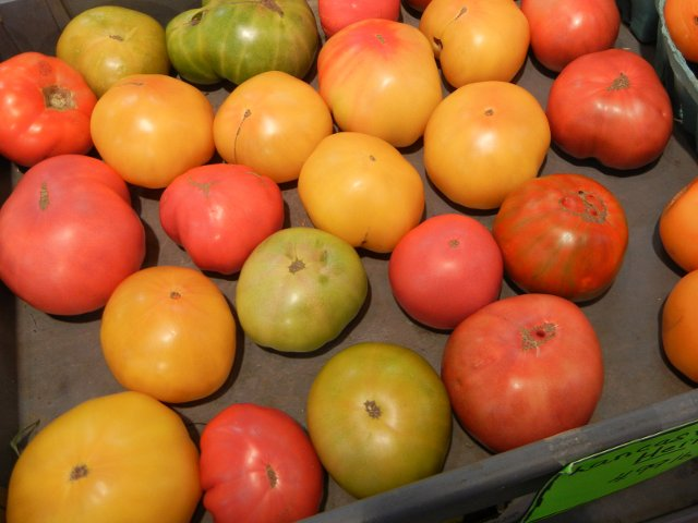 An assortment of large heirloom tomatos, all large in size, but different colors and shapes, yellow, green, pink, red, orange, some striped, some lumpy, some smooth