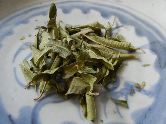 Dried lemon verbena leaves, long, pointed leaves, some curled, a few broken somewhat, on a light blue ceramic plate