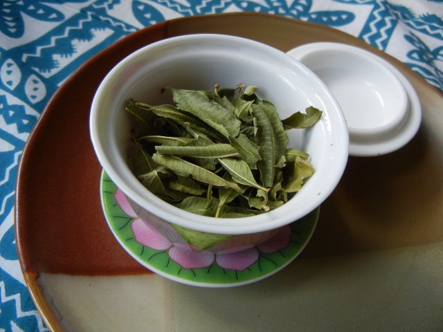 Lemon verbena leaves, dry, in a gaiwan, a Chinese lidded bowl for brewing tea