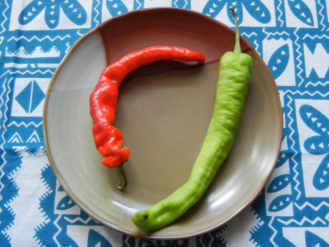 A brown ceramic plate, on a blue and white tablecloth, with a bright red-orange pepper, slightly crinkly, and curved, and a similarly-shaped pepper with a light green color