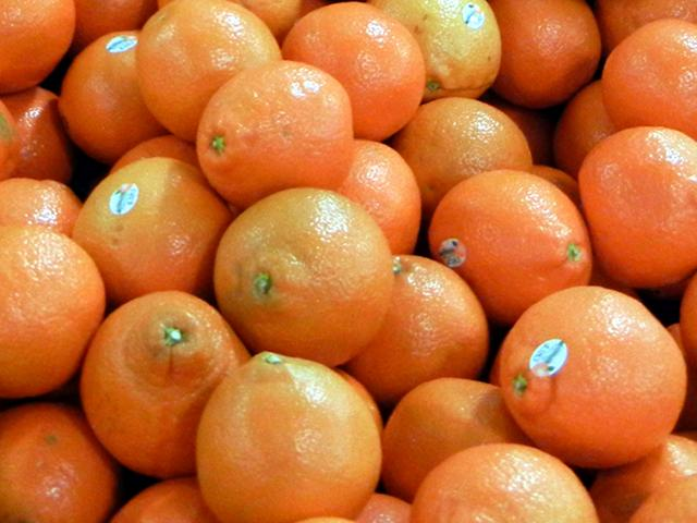 Orange-sized, orange colored citrus fruit, with a slight bell or pear shape.