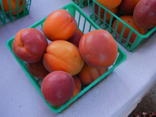 Apricots in a small container, with a rich red color and rich orange color