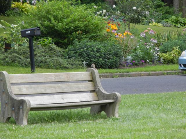 Eastern Phoebe On A Park Bench Near A Flower Garden Photos On