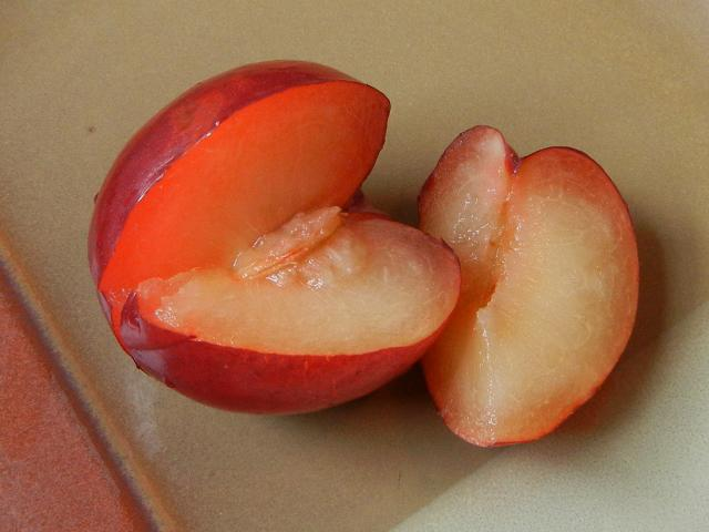 A red plum, showing dark red skin and yellow flesh, with a quarter sliced off, showing the pit in the rest of the plum, on a tan ceramic plate
