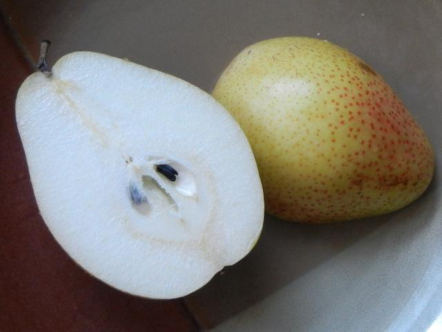 A sliced pear on a ceramic plate, showing crisp white interior and yellow skin with spots, a red tinge on some of the spots