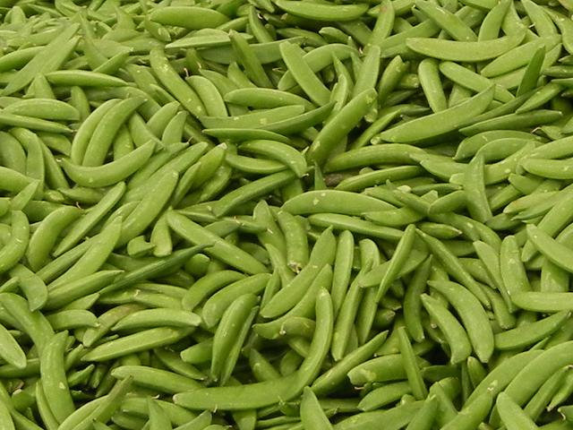 Lots of green snap pea pods
