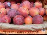 Aprium plums on a shelf with a sign reading: Aprium Plums - $3.99 lb