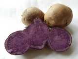 A blue (purple) potato, sliced open, showing purple interior, with whole potatos in the background.