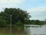 Flooding, showing standing water in the entire field of view, and telephone poles showing where a road lies under the water, trees in the background