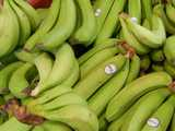 Bunches of green bananas, bearing a produce sticker reading: Bonita and Ecuador