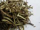 Closeup of loose-leaf white tea, with golden-leaf buds covered in downy hairs
