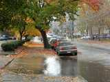 A flooded driveway and fallen autumn leaves on the sidewalk, along a city street