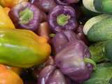 Purple bell peppers, a lighter purple with some paler areas, next to cucumbers and yellow-green bell peppers