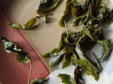 Large, intact leaves of oolong tea, attached to stems and showing lightly serrated edges
