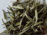 Silvery downy tips of tea