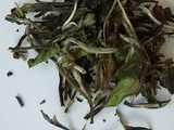 large dark green tea leaves, with some brown and some silvery downy tips