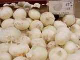 Numerous White Onions in a bin, a sign reading: white onion, 69 cents -lb-