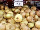 Large, light yellow onions in a bin, with most onions having a visible flat shape, a sign reading: sweet onion, 59 cents -lb-