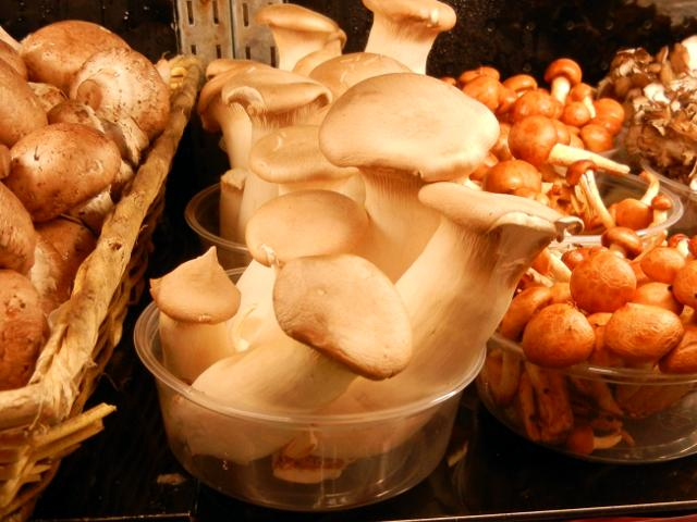 Trumpet royal mushrooms, very pale in color, showing a small flat cap and long, thick stem