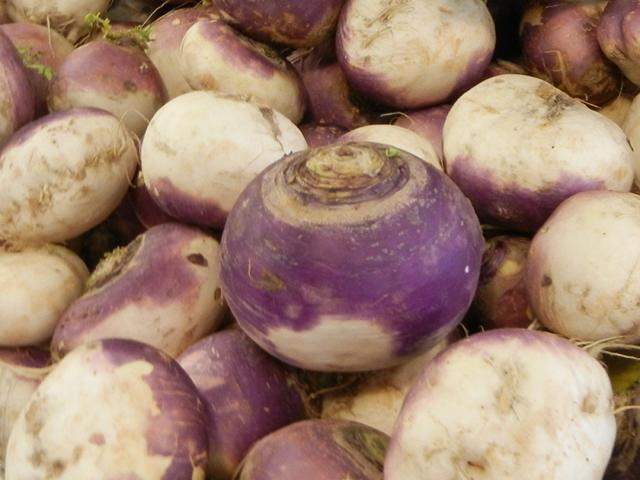 Large turnips, white and purple